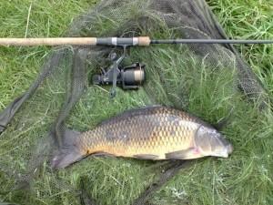 Hillside-Fishery-2