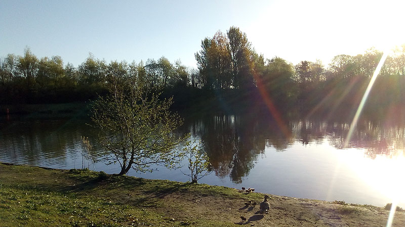 Orrell Water Park 1