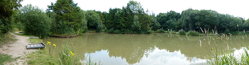 Fir Tree Fishery - A variety of lakes