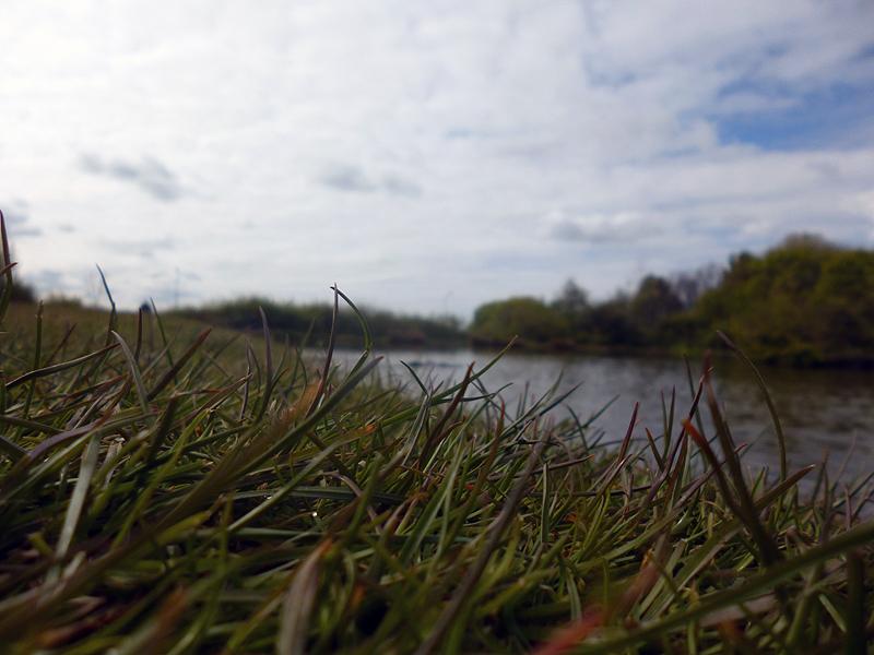Chequer Lane Fishing Lake 4 - low shot of the lake