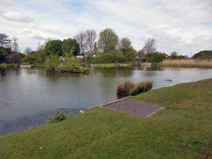 Chequer Lane Fishing Lake 2 - Long short of lake
