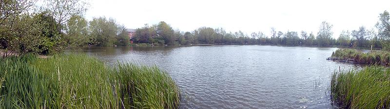 vPlatts Lane Fishing Lake - fishshinig pegPlatts Lane Fishing Lake - fishshinig pegPlatts Lane Fishing Lake - panorama
