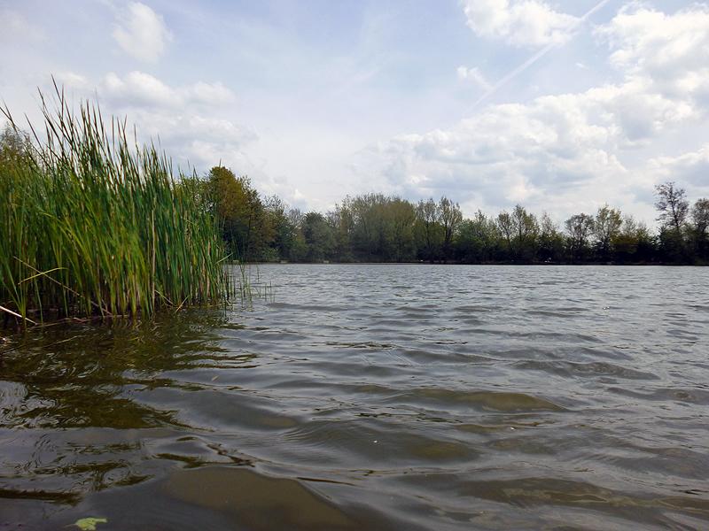 Platts Lane Fishing Lake - low down shot